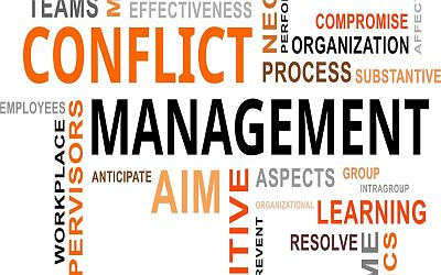 CONFLICT MANAGEMENT IN A PROFESSIONAL ENVIRONMENT